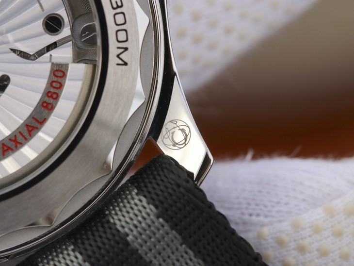 Omega Logo on Lug