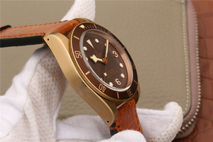 Tudor Bronze Case