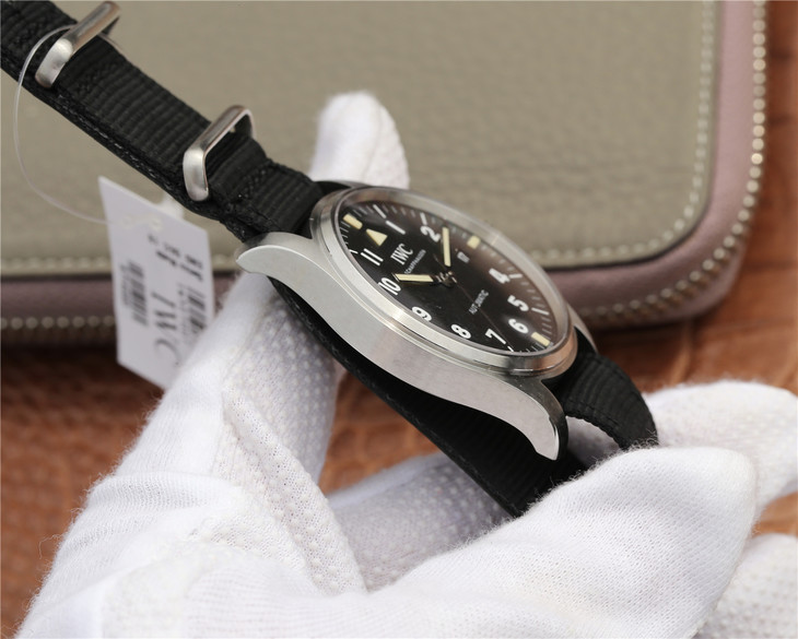 IW327007 Stainless Steel Case
